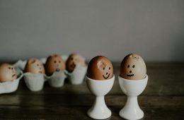 test van beste eierkokers van 2019
